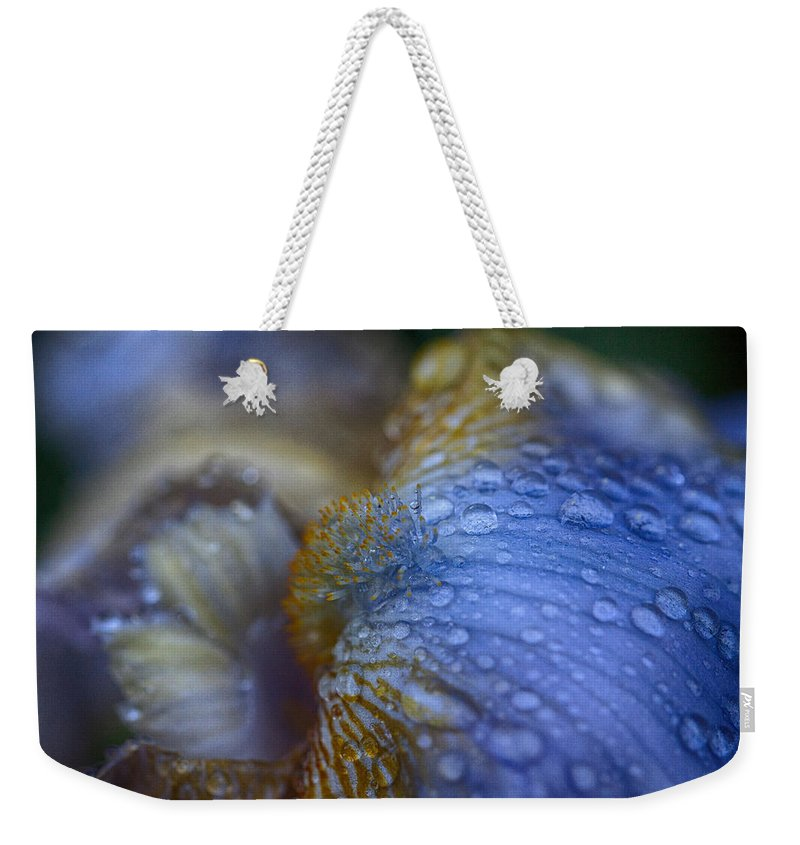 Bearded Iris Weekender Tote Bag featuring the photograph Blue Danube by Jeff Folger