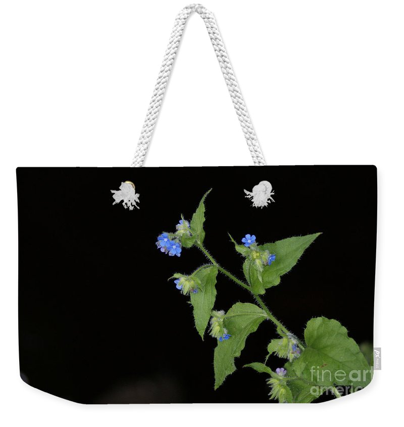 Blue Weekender Tote Bag featuring the photograph Blue Flowers by Carol Lynch