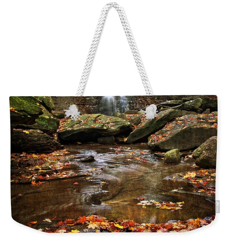 Water Weekender Tote Bag featuring the photograph Blue Hen Falls In Autumn by Dale Kincaid