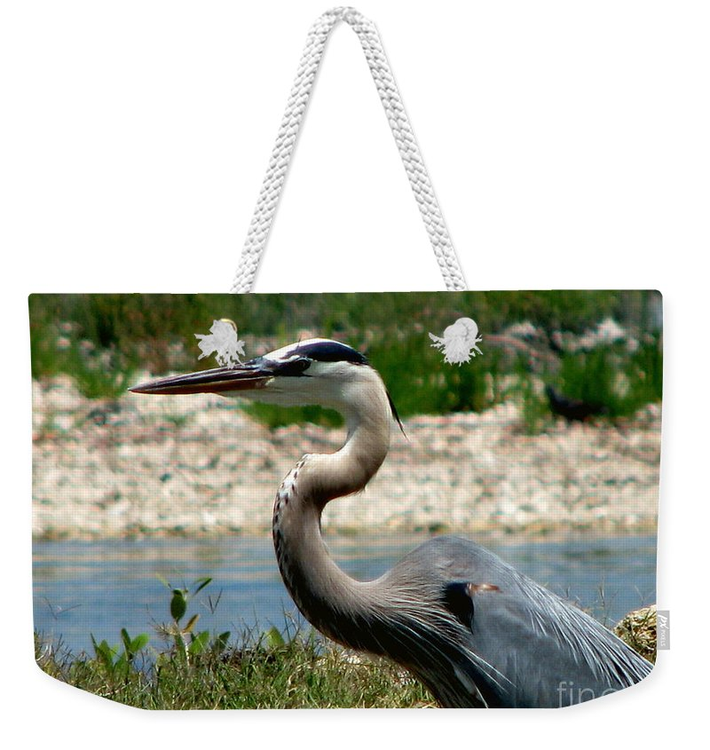Art For The Wall...patzer Photography Weekender Tote Bag featuring the photograph Blue Heron by Greg Patzer