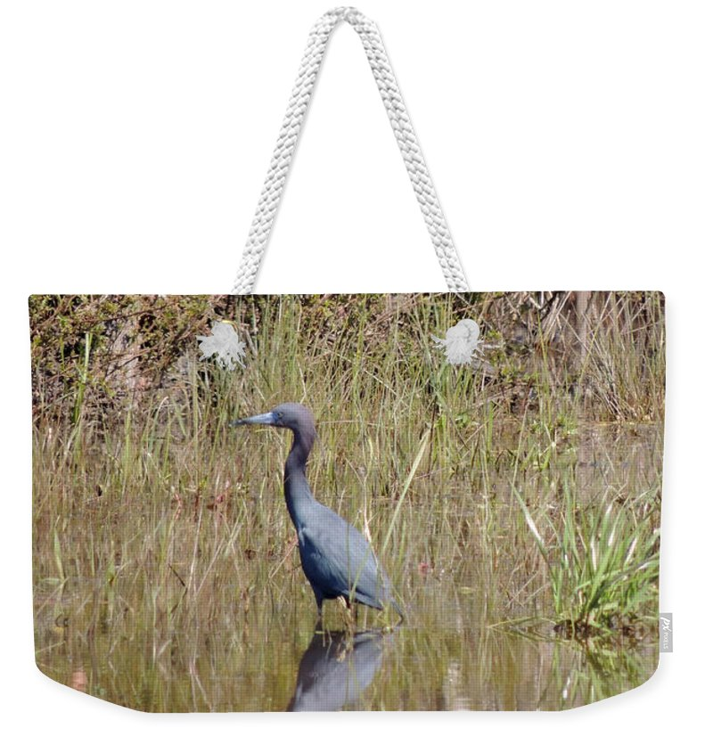 Digital Photography Weekender Tote Bag featuring the photograph Blue Heron by Kim Pate