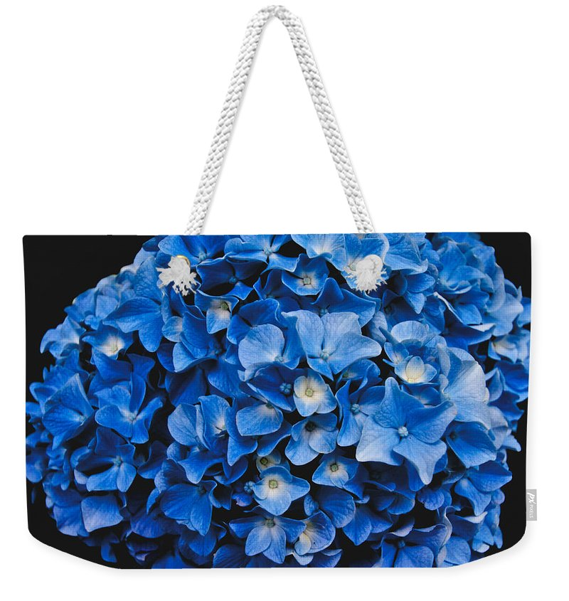 Blue Hydrangea Weekender Tote Bag featuring the photograph Blue Hydrangea 1 by William Norton