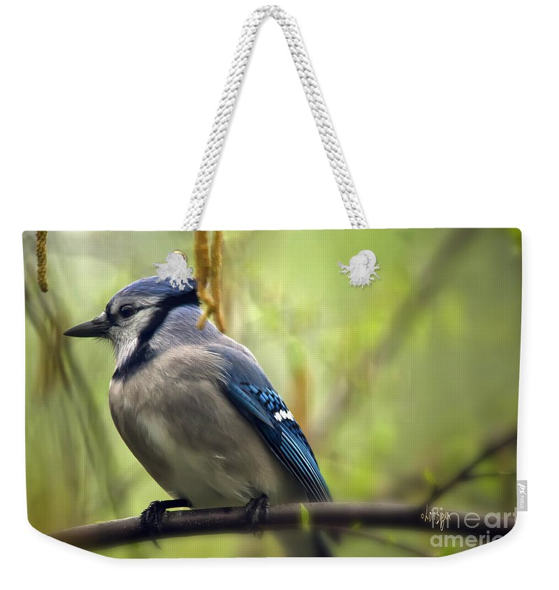 Bird Weekender Tote Bag featuring the photograph Blue Jay On A Misty Spring Day by Lois Bryan
