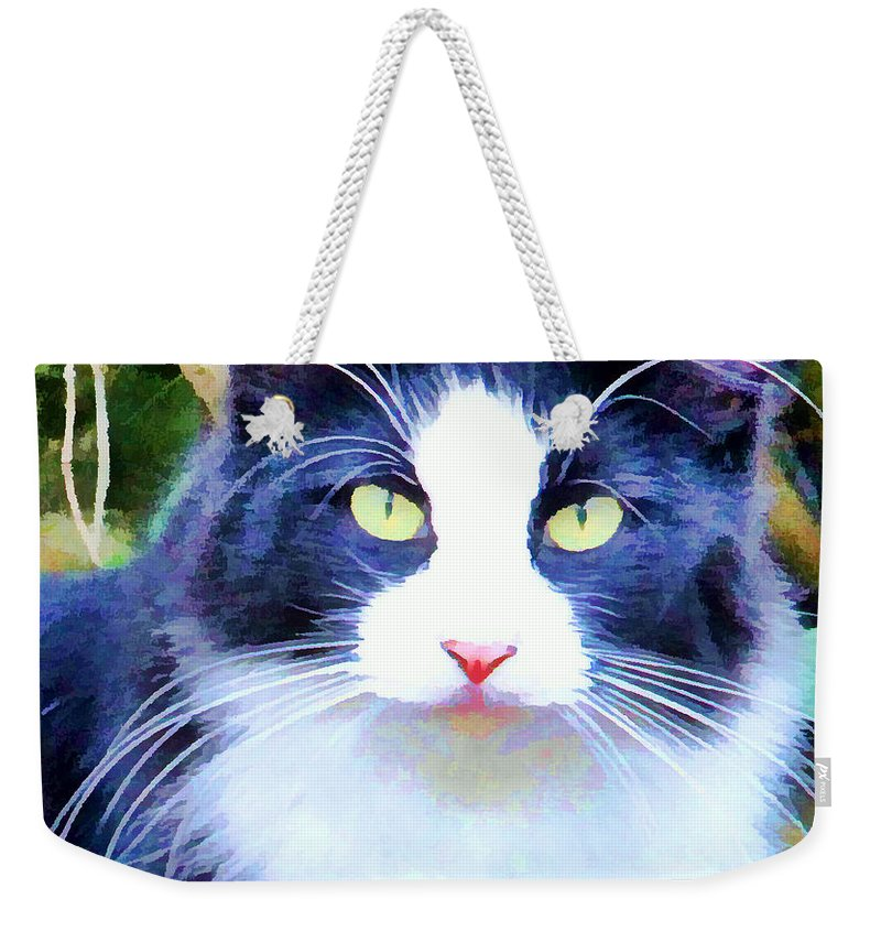 Cat Black White Weekender Tote Bag featuring the photograph Blue Kitty by Alice Gipson