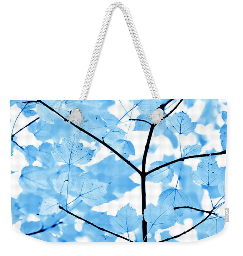Leaf Weekender Tote Bag featuring the photograph Blue Leaves Melody by Jennie Marie Schell
