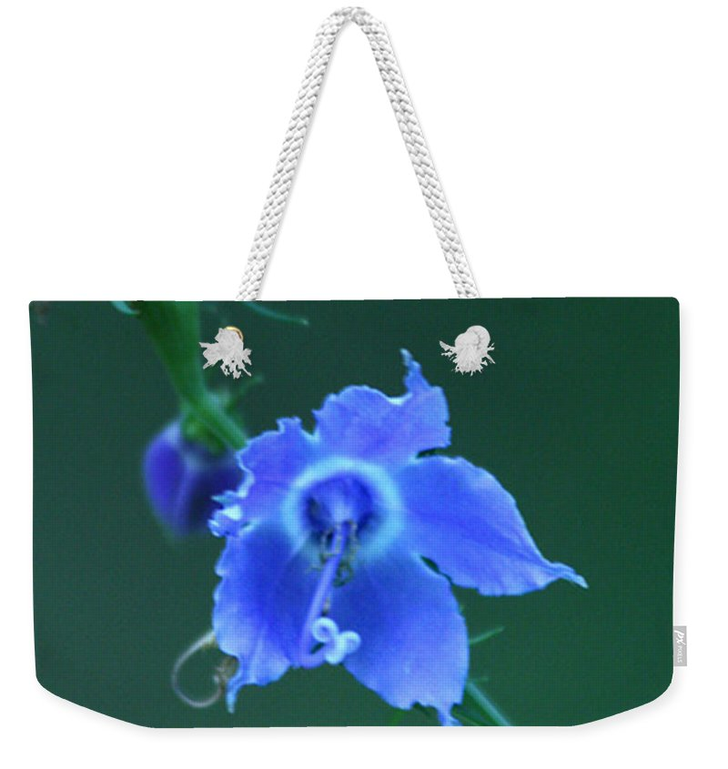 Blue Weekender Tote Bag featuring the photograph Blue On Green by Crystal Heitzman Renskers