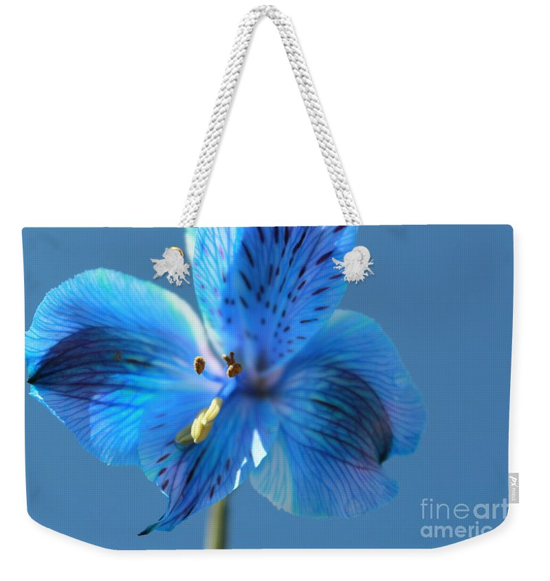 Blue Flower Weekender Tote Bag featuring the photograph Blue Summer by Krissy Katsimbras