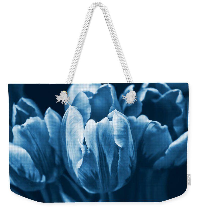 Tulip Weekender Tote Bag featuring the photograph Blue Tulip Flowers by Jennie Marie Schell