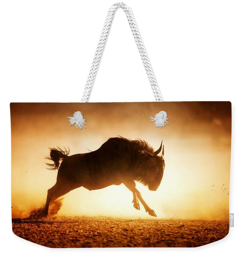 Wildebeest Weekender Tote Bag featuring the photograph Blue Wildebeest Running In Dust by Johan Swanepoel