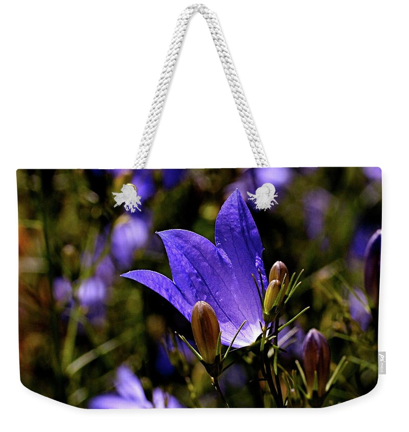 Bluebell Weekender Tote Bag featuring the photograph Bluebell by Rona Black