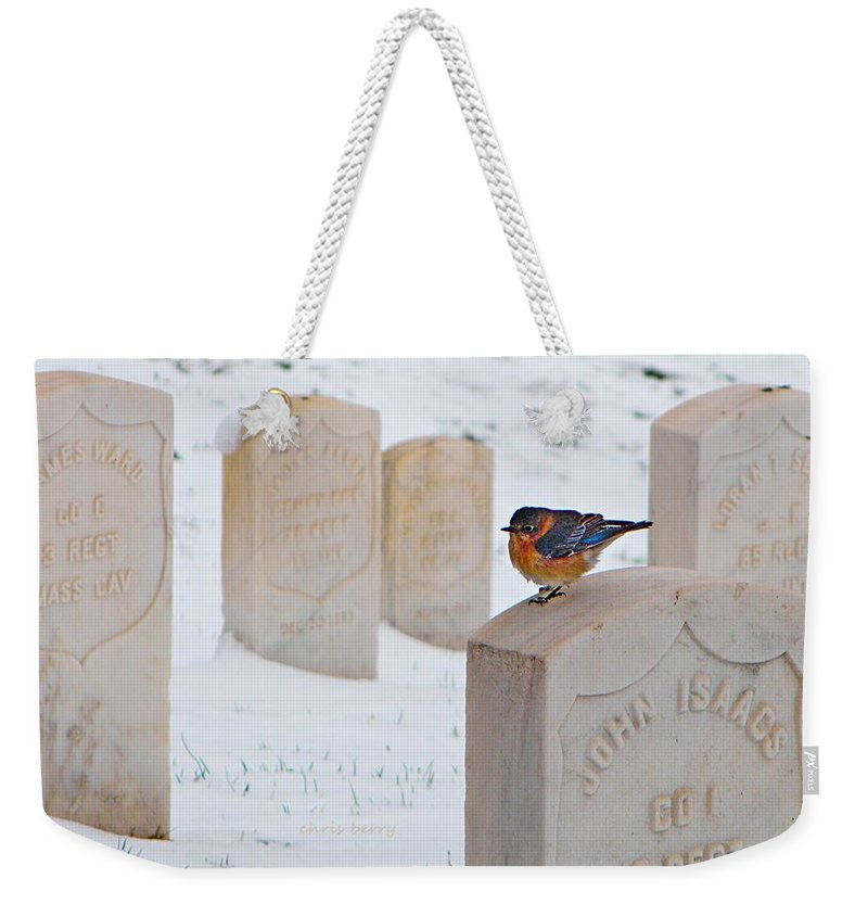 Cemetery Weekender Tote Bag featuring the photograph Bluebird by Chris Berry