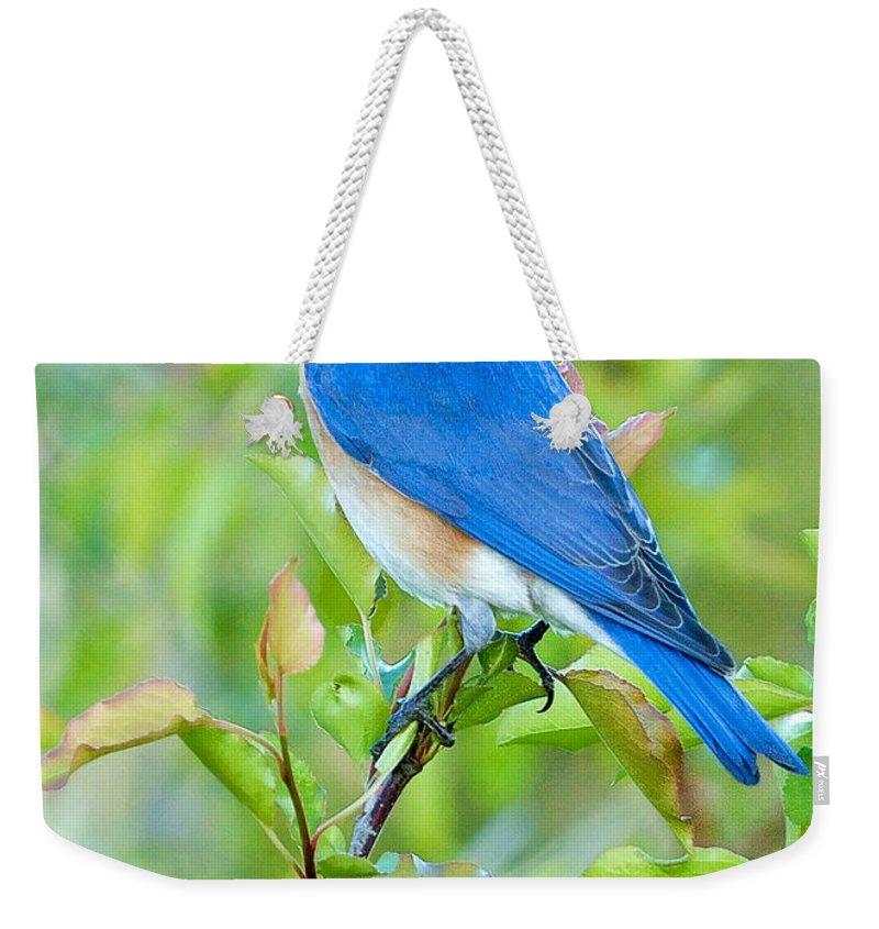 Bluebird Weekender Tote Bags