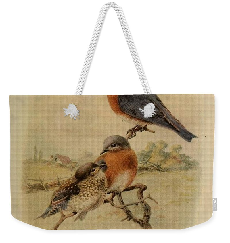 Bluebird Weekender Tote Bag featuring the painting Bluebirds by Philip Ralley