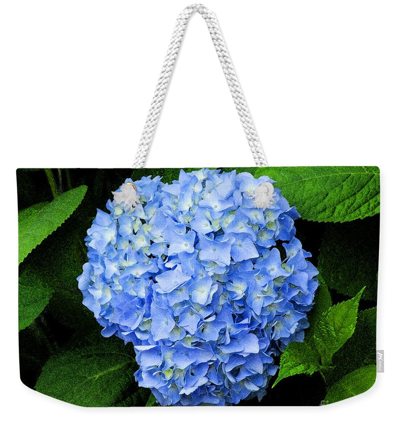 Flower Weekender Tote Bag featuring the photograph Blues Hues by Joe Geraci