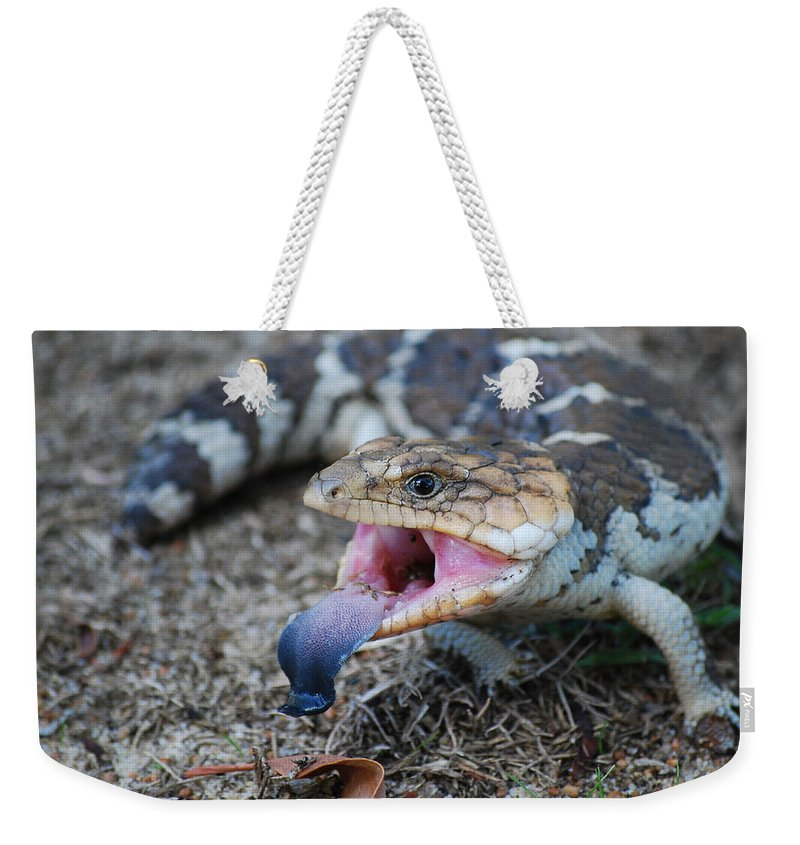 Bobtail Weekender Tote Bag featuring the photograph Bobtail Lizard by Michelle Wrighton
