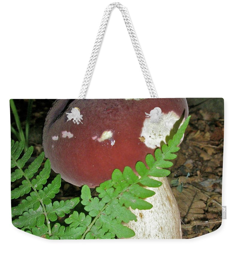 Mushroom Weekender Tote Bag featuring the photograph Bolete Mushroom And Fern by Mother Nature