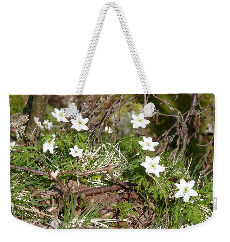 Weekender Tote Bag featuring the photograph Born Of Snow by Katerina Naumenko