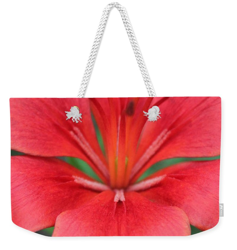 Weekender Tote Bag featuring the photograph Botanical Beauty 2 by Jennifer E Doll