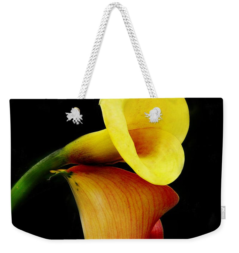 Flower Weekender Tote Bag featuring the digital art Both Of Us by Ana Cedillo