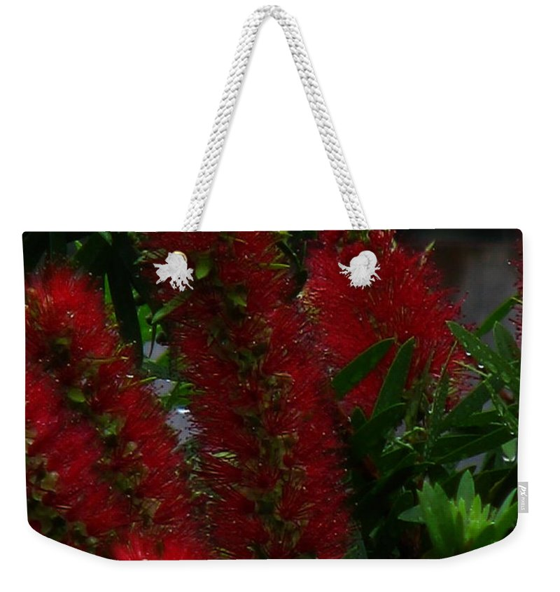 Patzer Weekender Tote Bag featuring the photograph Bottle Brush by Greg Patzer