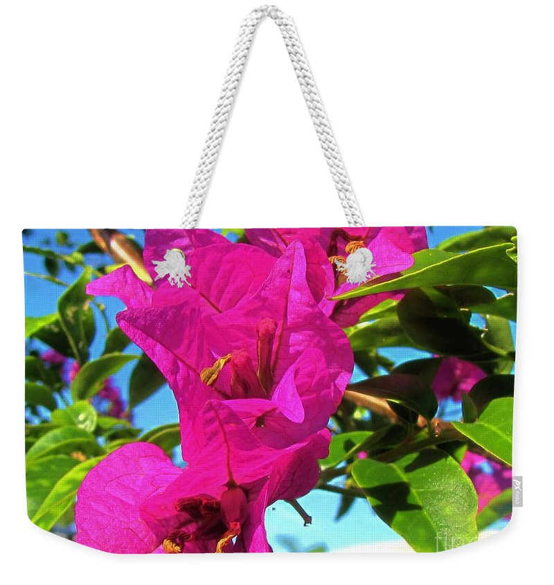 Keri West Weekender Tote Bag featuring the photograph Bougainvillea Beauty by Keri West