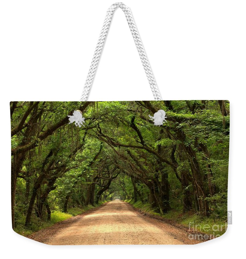 Avenue Of The Oaks Weekender Tote Bag featuring the photograph Bowing Oak Trees by Adam Jewell