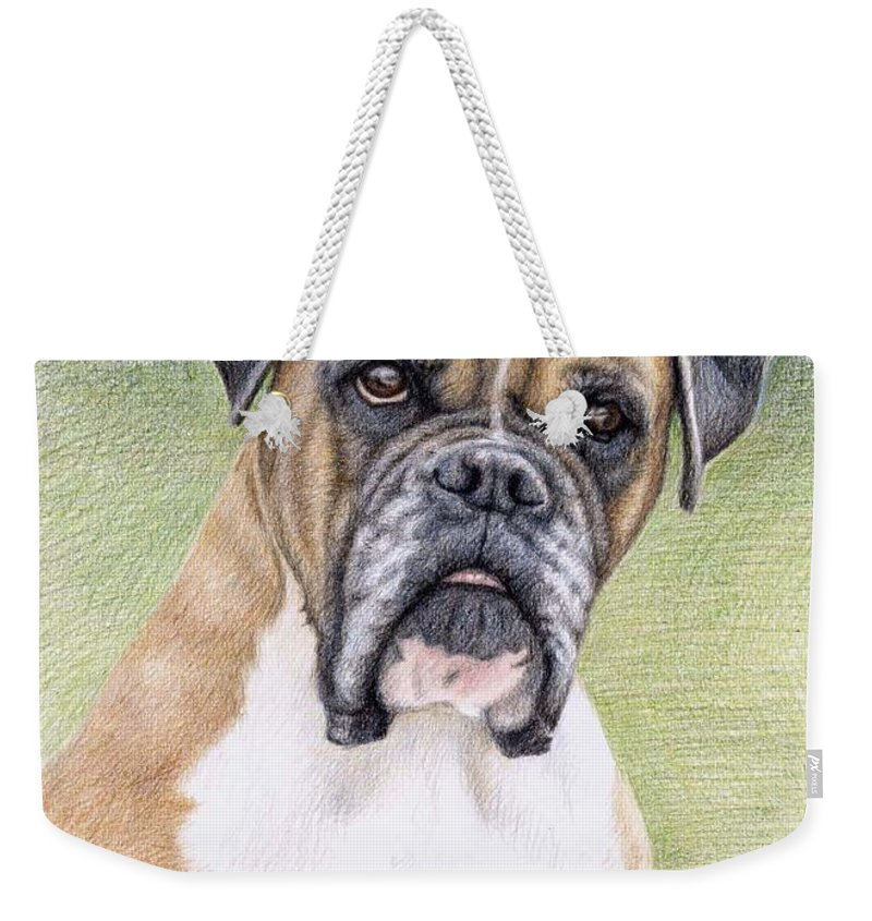 Dog Weekender Tote Bag featuring the drawing Boxer Portrait by Nicole Zeug