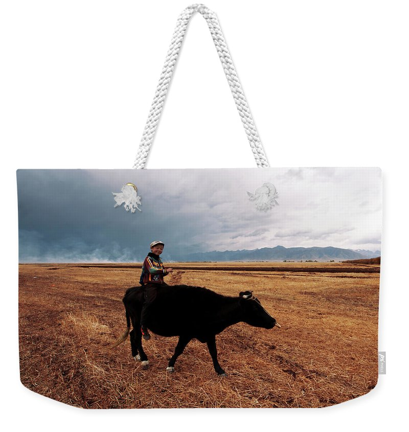 Scenics Weekender Tote Bag featuring the photograph Boy Sitting Cow In Field by Touch The Word By Heart.
