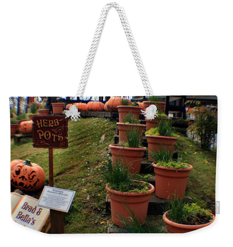 Abstract Weekender Tote Bag featuring the photograph Brad And Bellas Garden by Doc Braham