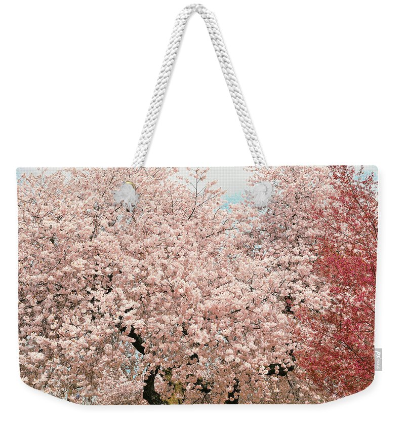 Branch Brook Park Cherry Blossoms Weekender Tote Bag featuring the photograph Branch Brook Cherry Blossoms Iv by Regina Geoghan