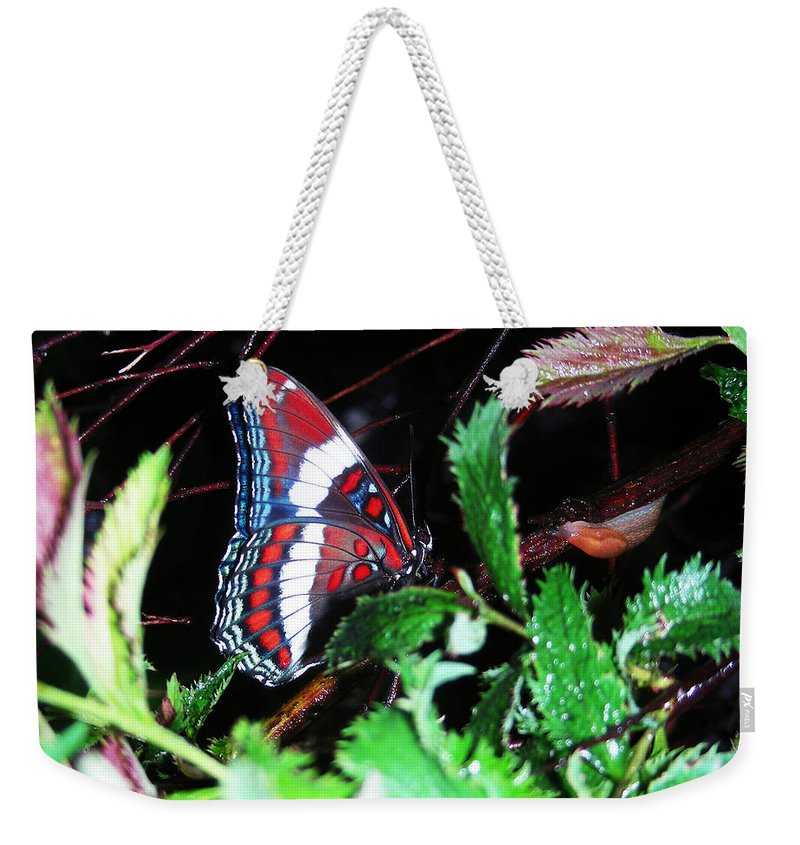 Faunagraphs Art Weekender Tote Bag featuring the photograph Branch Encounter by Torie Tiffany