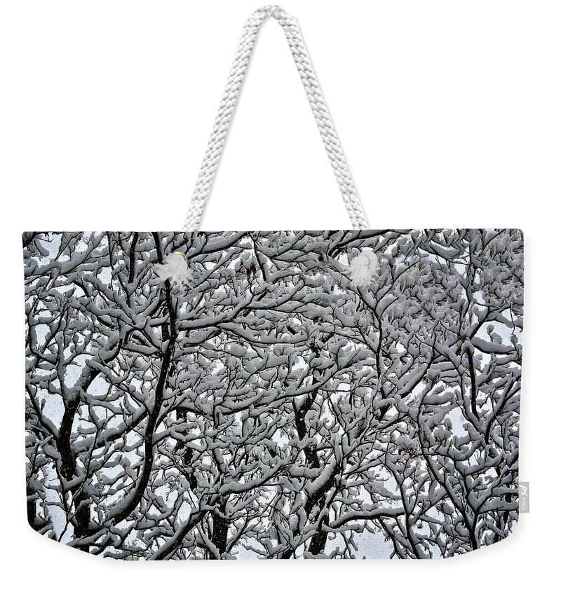 Idaho Falls Weekender Tote Bag featuring the photograph Branches Of Our Life by Image Takers Photography LLC - Carol Haddon