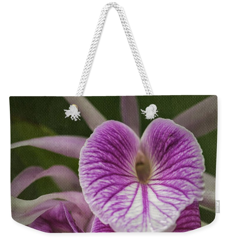 Orchid Weekender Tote Bag featuring the photograph Brassocattleya Morning Glory by Fran Gallogly