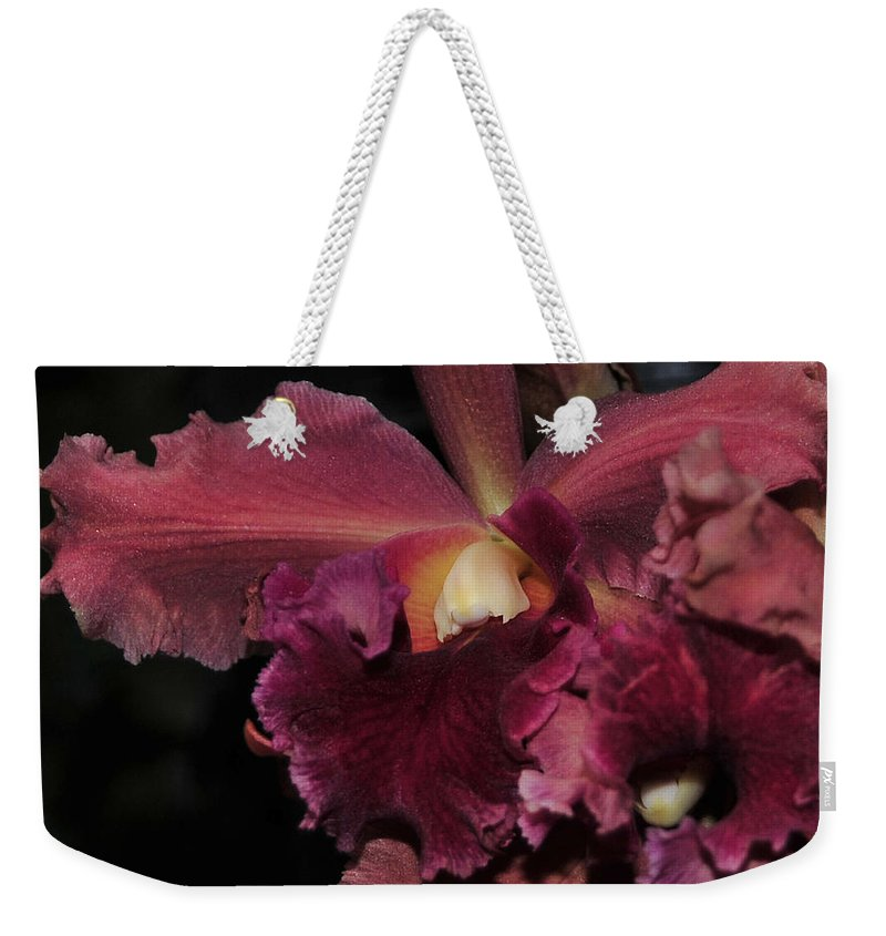 Orchid Weekender Tote Bag featuring the photograph Brassolaeliocattleya Helen Huntington Chevy Chase by Terri Winkler