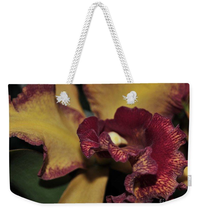 Orchid Weekender Tote Bag featuring the photograph Brassolaeliocattleya Melinda Wheeler Halcyon by Terri Winkler