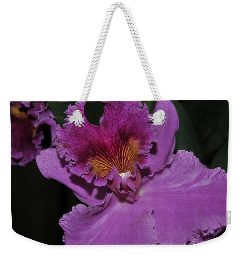 Orchid Weekender Tote Bag featuring the photograph Brassolaeliocattleya Norman's Bay Hercules by Terri Winkler