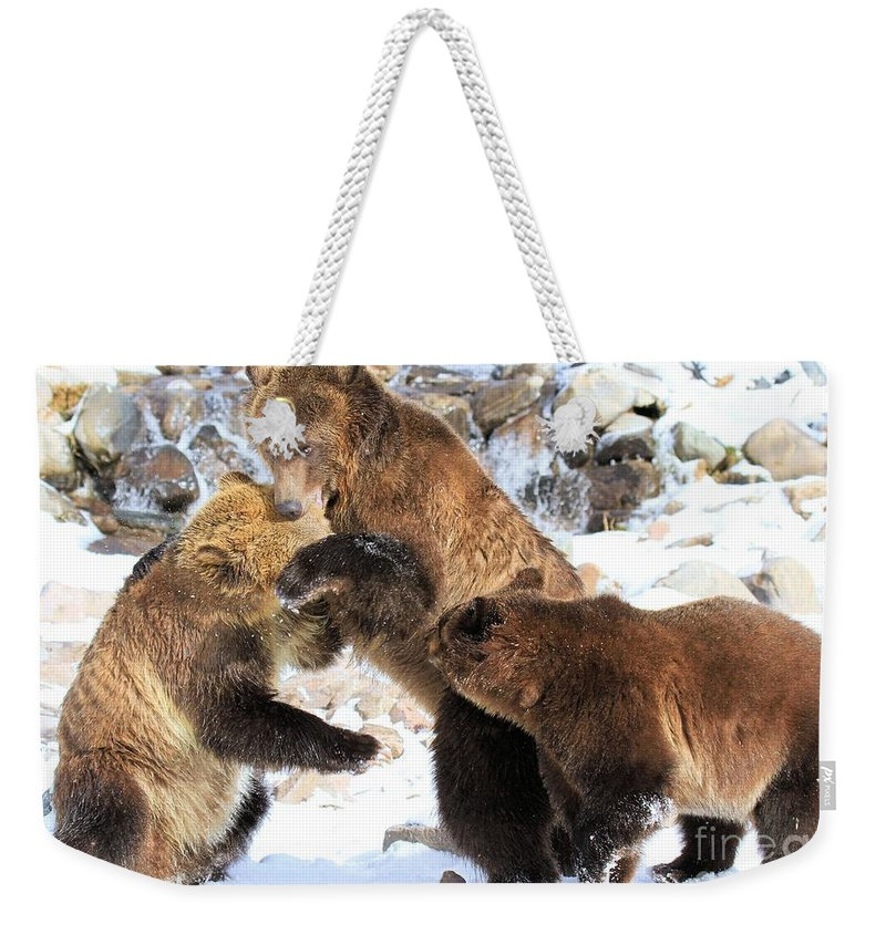 Grizzly Bear Weekender Tote Bag featuring the photograph Break It Up by Adam Jewell
