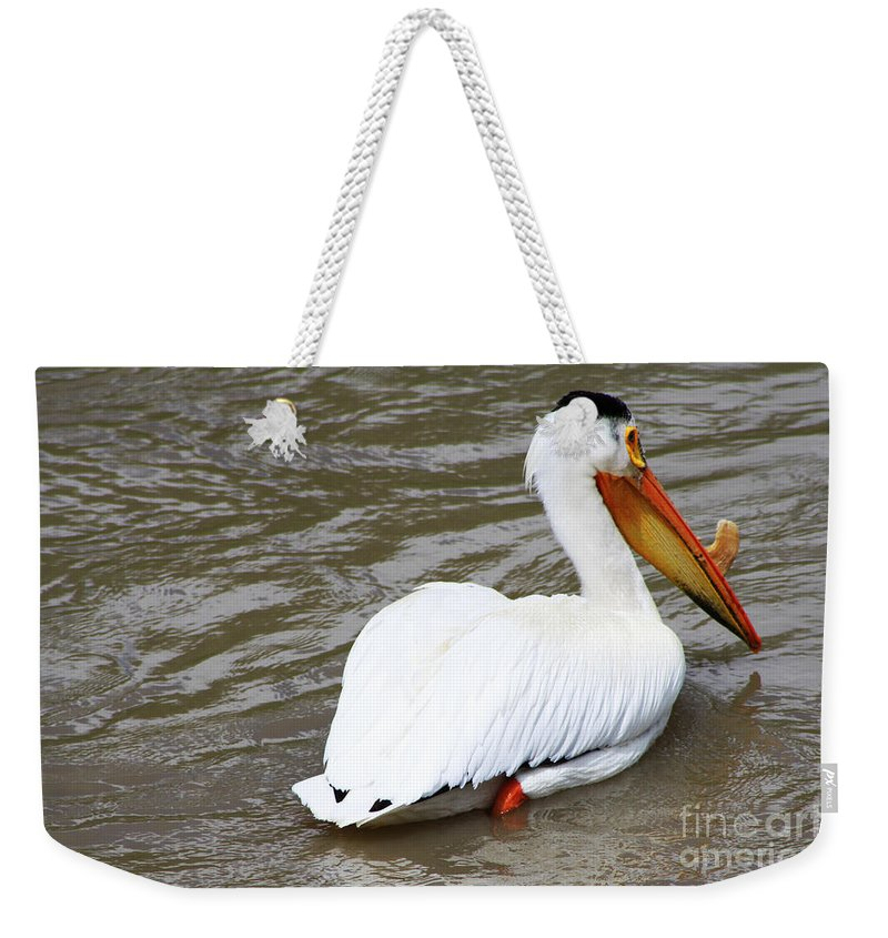 Bird Weekender Tote Bag featuring the photograph Breeding Plumage by Alyce Taylor