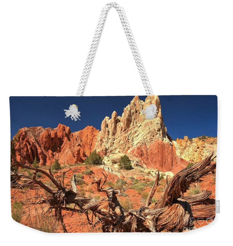 Cottonwood Road Weekender Tote Bag featuring the photograph Bright And Twisted by Adam Jewell