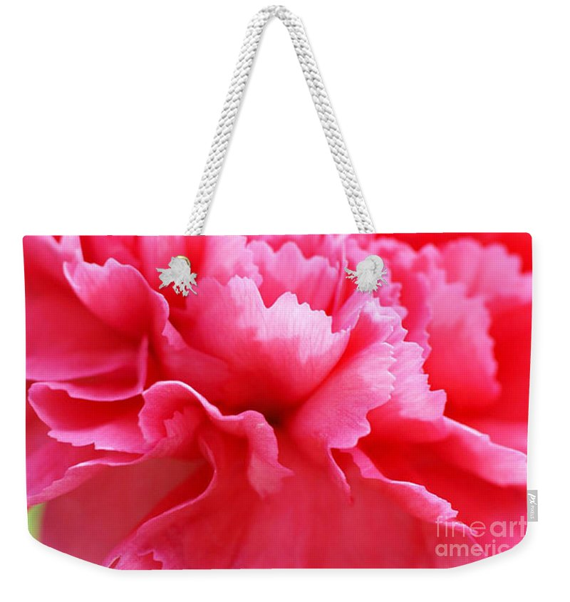 Carnation Weekender Tote Bag featuring the photograph Bright Carnation by Carol Lynch