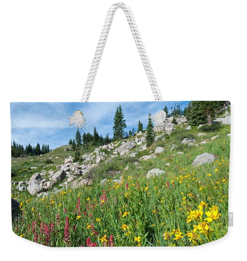 Colorful Weekender Tote Bag featuring the photograph Bright Colors Of A Colorado Summer by Cascade Colors