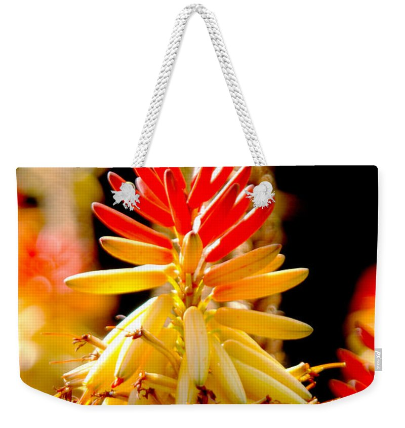 Las Palmas Weekender Tote Bag featuring the photograph Bright Flower by Tracy Winter