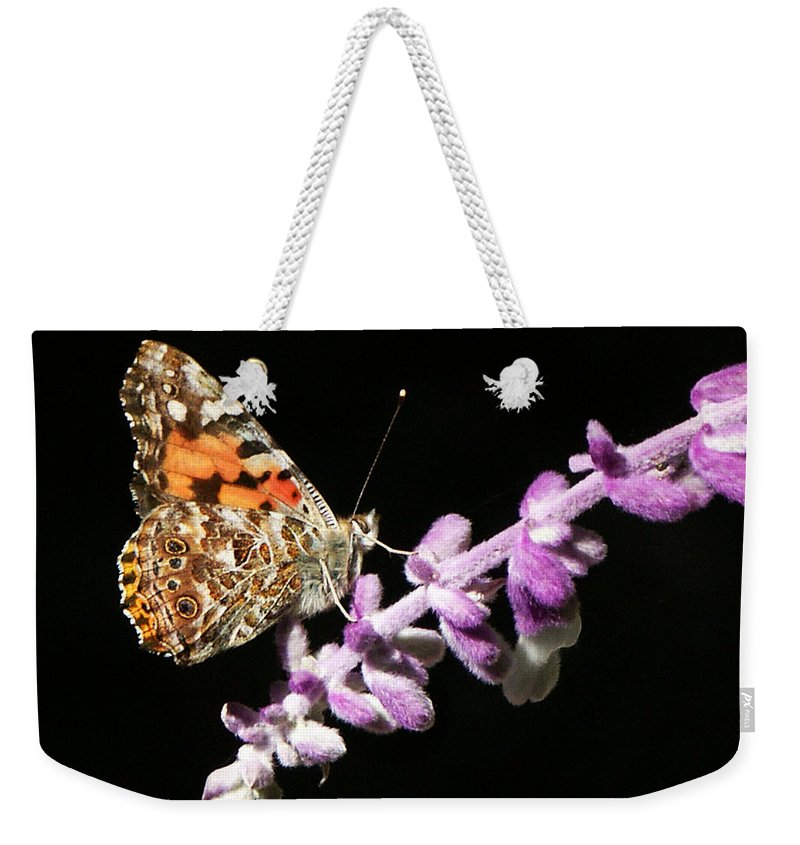 Painted Lady Weekender Tote Bag featuring the photograph Painted Lady Butterfly On Purple Flower by Marilyn Hunt