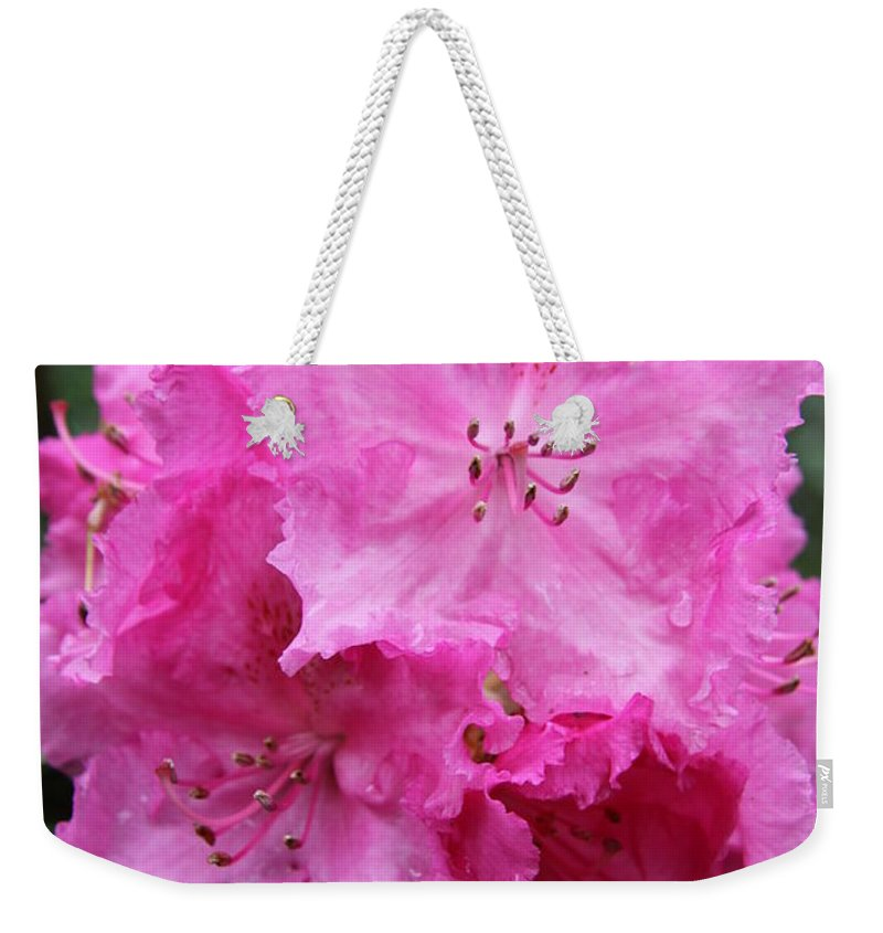Rhododendron Weekender Tote Bag featuring the photograph Bright Pink Blossoms by Christiane Schulze Art And Photography
