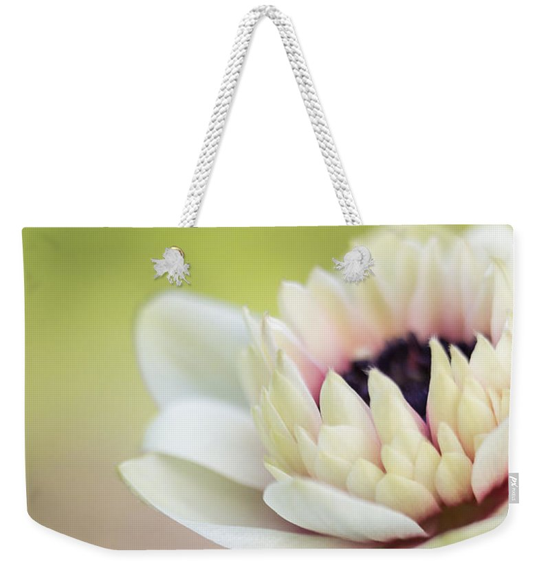 Anemone Weekender Tote Bag featuring the photograph Bright Spring by Caitlyn Grasso