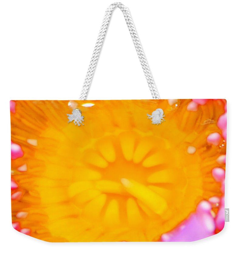 Inner Beauty Weekender Tote Bag featuring the photograph Inner Beauty by David Lee Thompson