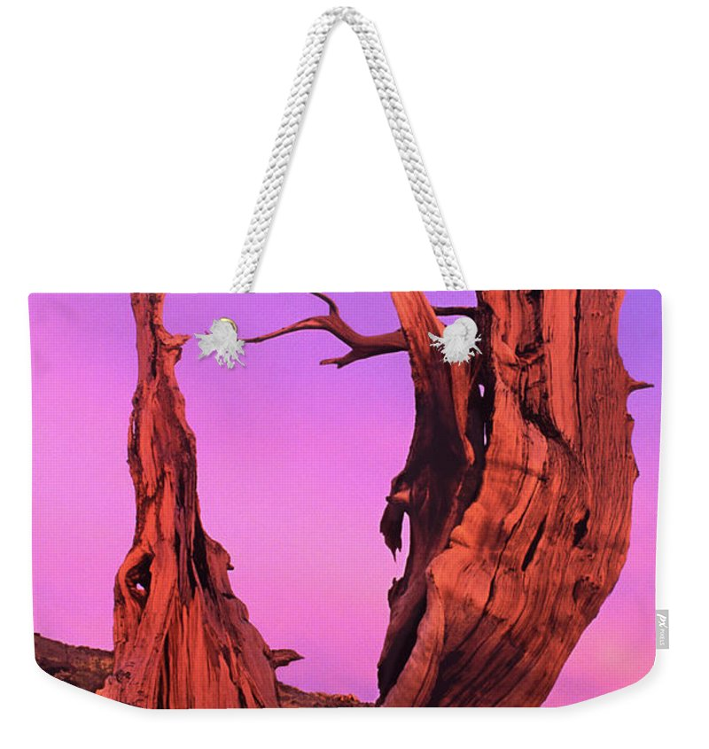 Bristlecone Weekender Tote Bag featuring the photograph Bristlecone Pine At Sunset White Mountains Californa by Dave Welling