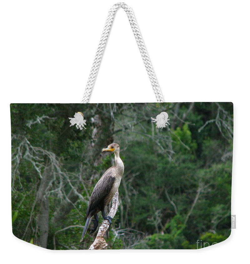 Patzer Weekender Tote Bag featuring the photograph Bristol Cormorant by Greg Patzer