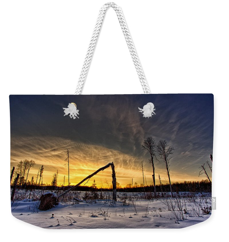 Bush Weekender Tote Bag featuring the photograph Broken Sustainable Forest Management by Jakub Sisak