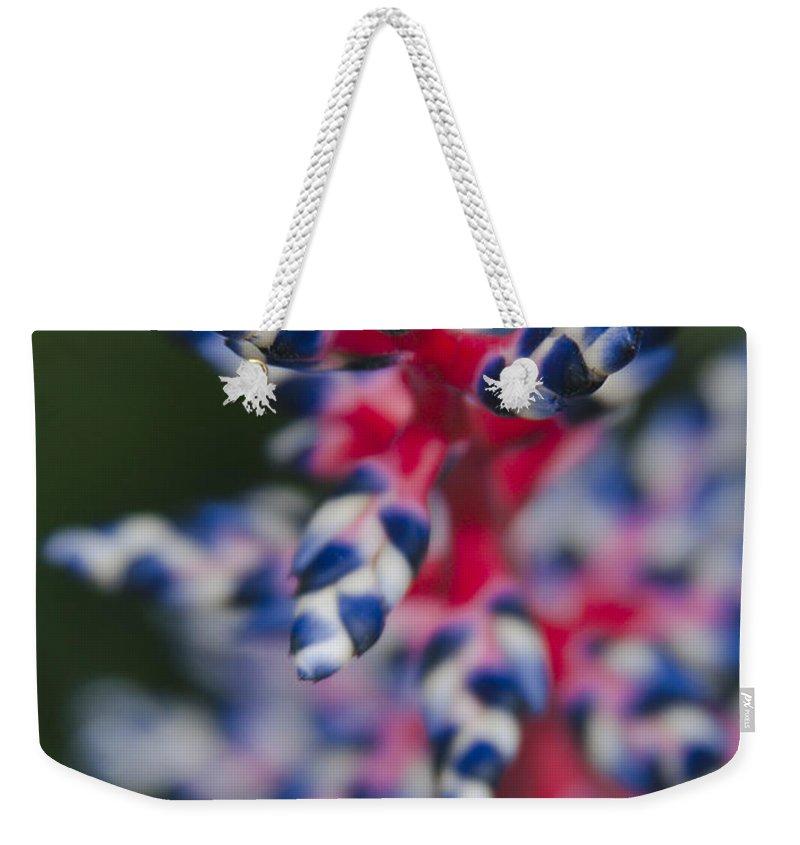 Bromeliad Weekender Tote Bag featuring the photograph Bromeliad - Aechmia Dichlamydea - Guzmania Lingulata by Sharon Mau